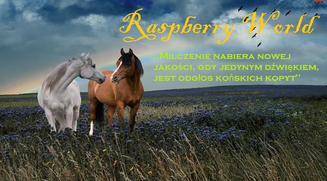Raspberry World Strona Główna